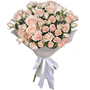 Купить розы ярославль дешево купить опт сухоцветы